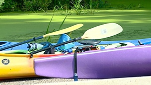 Mississippi River Paddle shows off area rivers