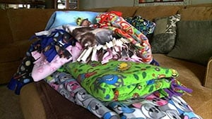 """Local """"Blanket Lady"""" spreads hope with love and a little cotton"""