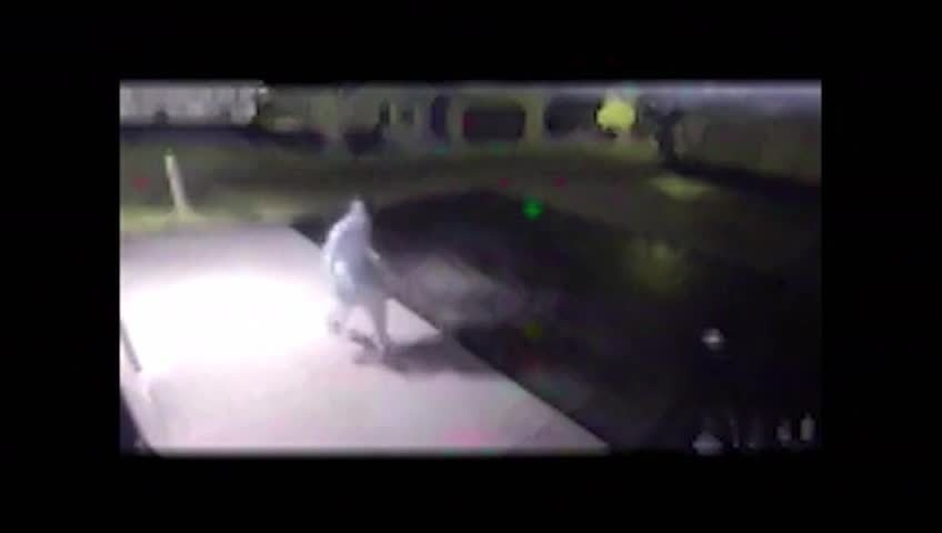 Rudy's Drive-In vandalized, police look for suspect