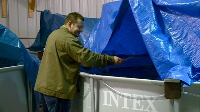 Westby Man Opens Wisconsin's First Indoor Shrimp Farm