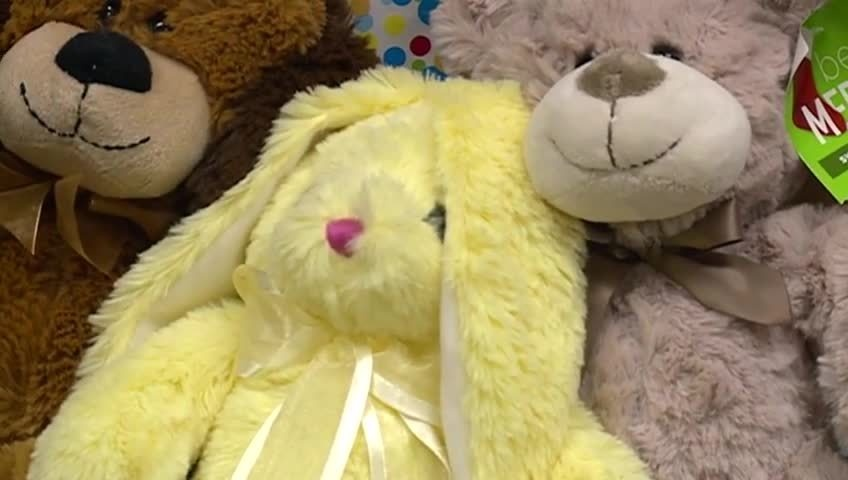 Local girls hold teddy bear drive to raise awareness of rare disorder