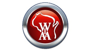 WIAA to offer concussion insurance for student athletes