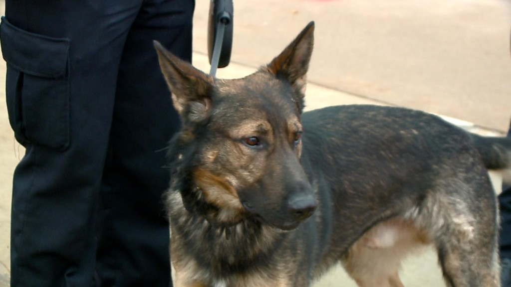 Donation drive supports bringing new K-9 officer to La Crosse Police