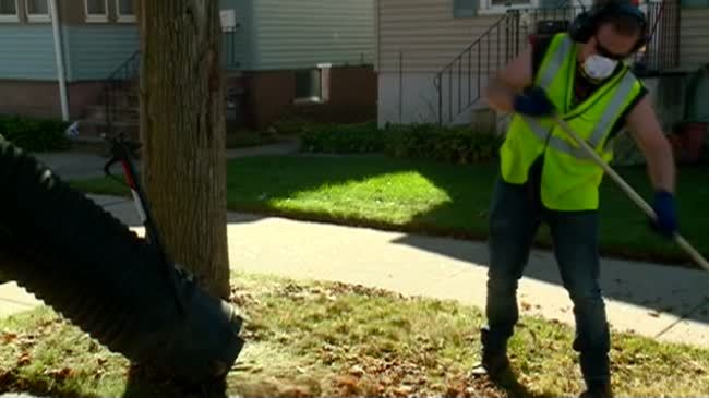 Leaf collection begins in La Crosse