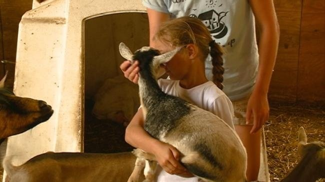 Farm Camp gives kids a chance to try farming