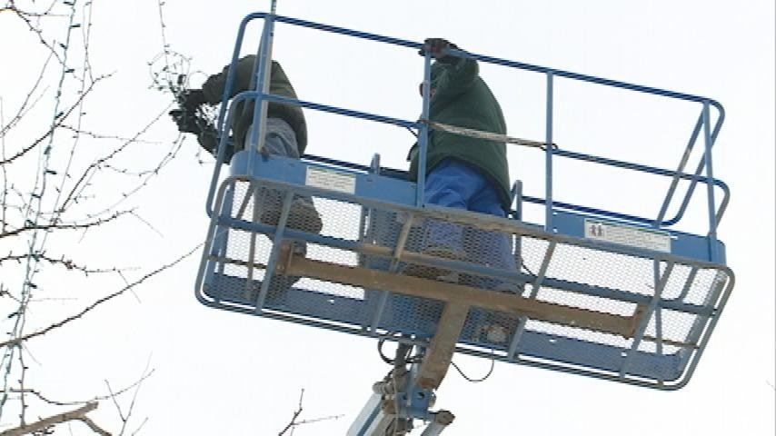 Rotary Lights begins cleanup