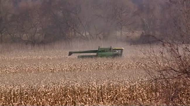 Minnesota fall harvest winds down as wintry weather sets in