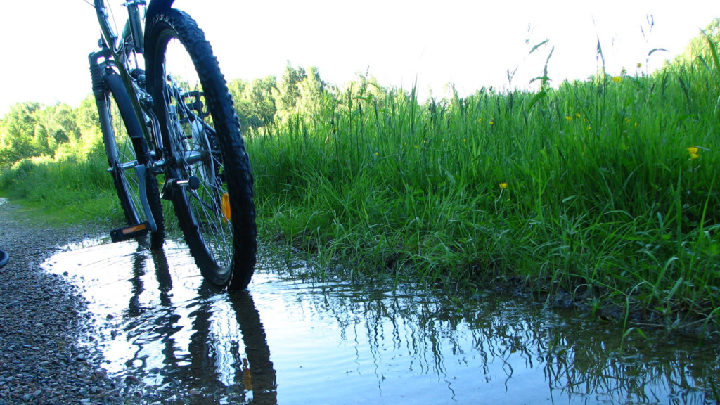 Two new mountain bike trails open up in Hixon Forest