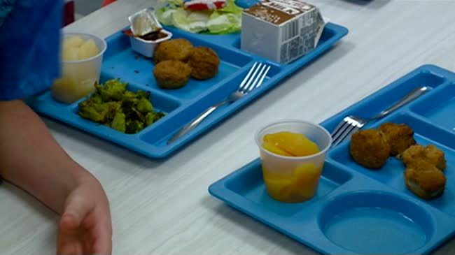 6 states and District of Columbia sue over school lunches