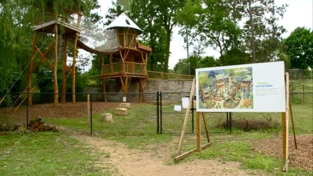 'Forest Scramble' reopens at EcoPark