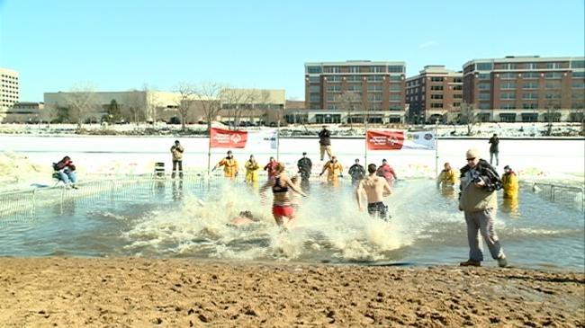 Fewer participants, more money raised at Polar Plunge