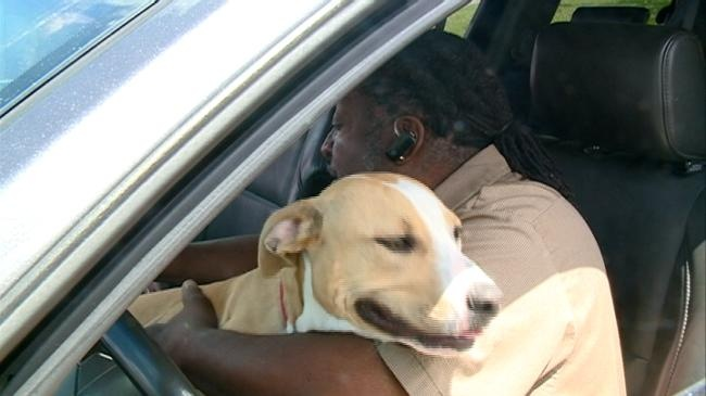 Retired veteran adopts dog to help with PTSD