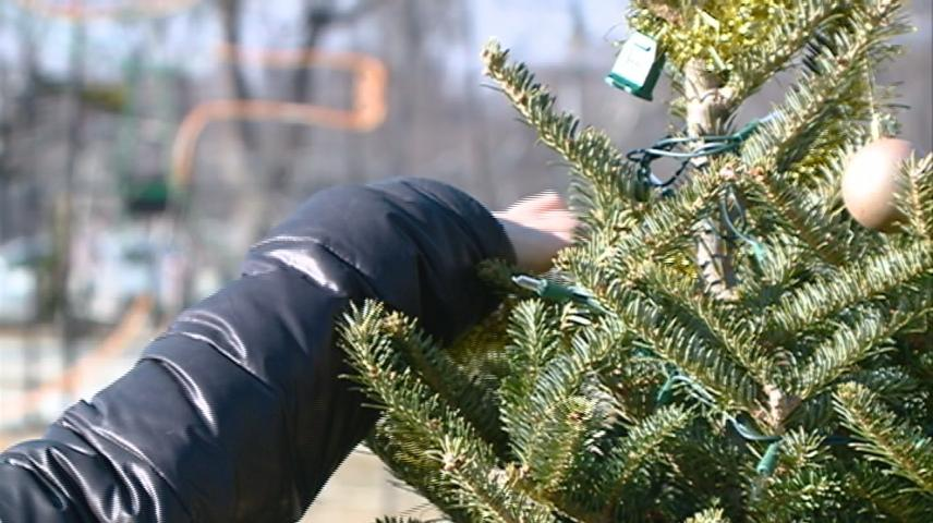 La Crosse's Rotary Lights display nearly ready to turn on for the season