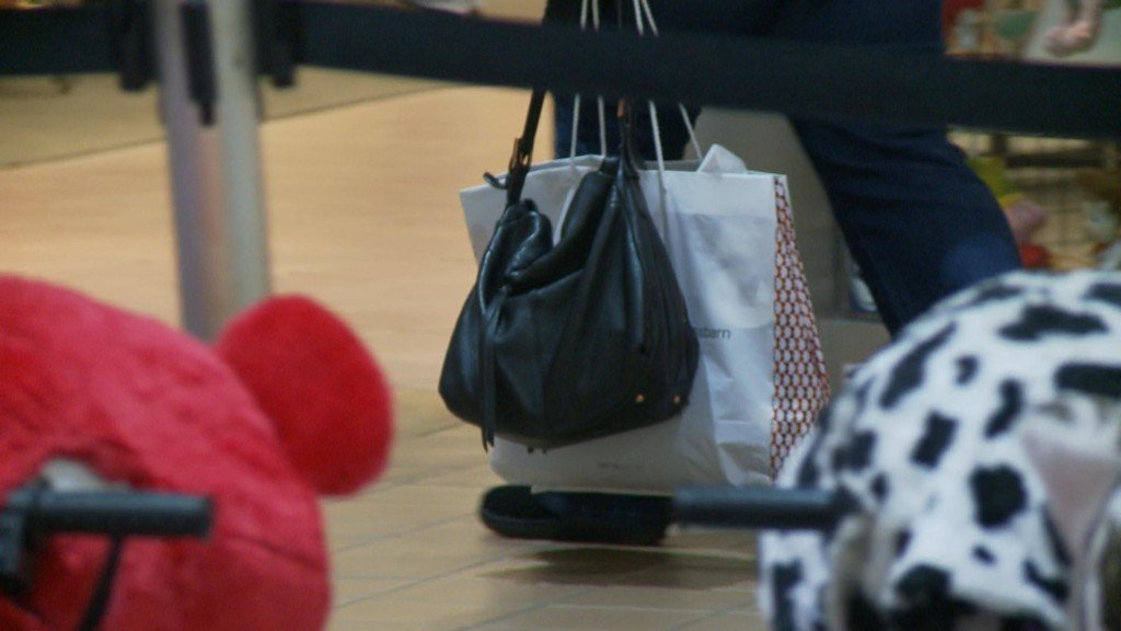 La Crosse Police Dept. gives helpful tips to keep belongings safe while holiday shopping