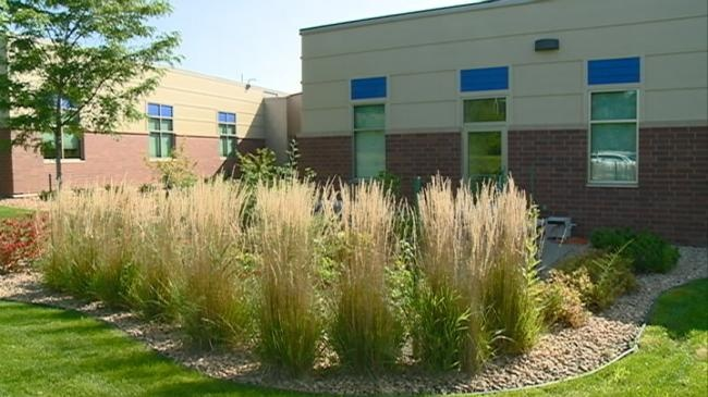Local business uses straw bale gardens to educate employees on nutritional health