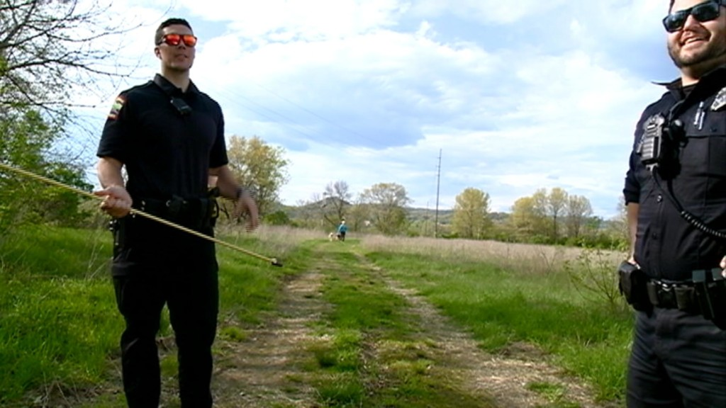 Two La Crosse Police Officers Round Up Cows Off of County Highway B