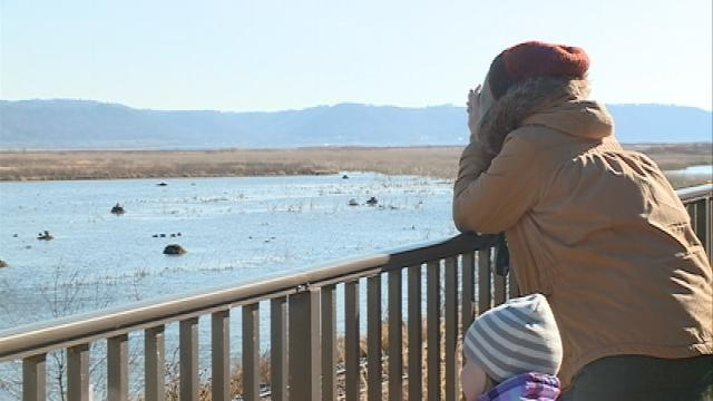 Dozens gather for Waterfowl Observation Day