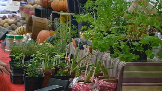 Manager: Winter Farmers Market is a success