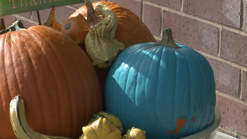 Teal Pumpkin Project helps make Halloween fun for all