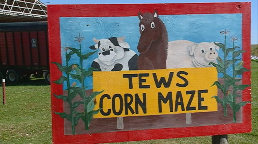 Tews Corn Maze, partnered with Culver's, thanks Winona area farmers