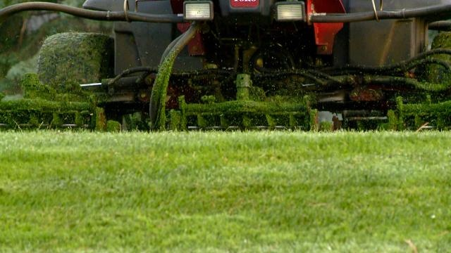 News 8 Eye Piece: Taking on the Big Lawn