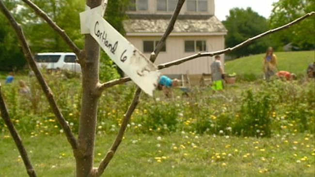 Assignment: Education – School Apple Orchard