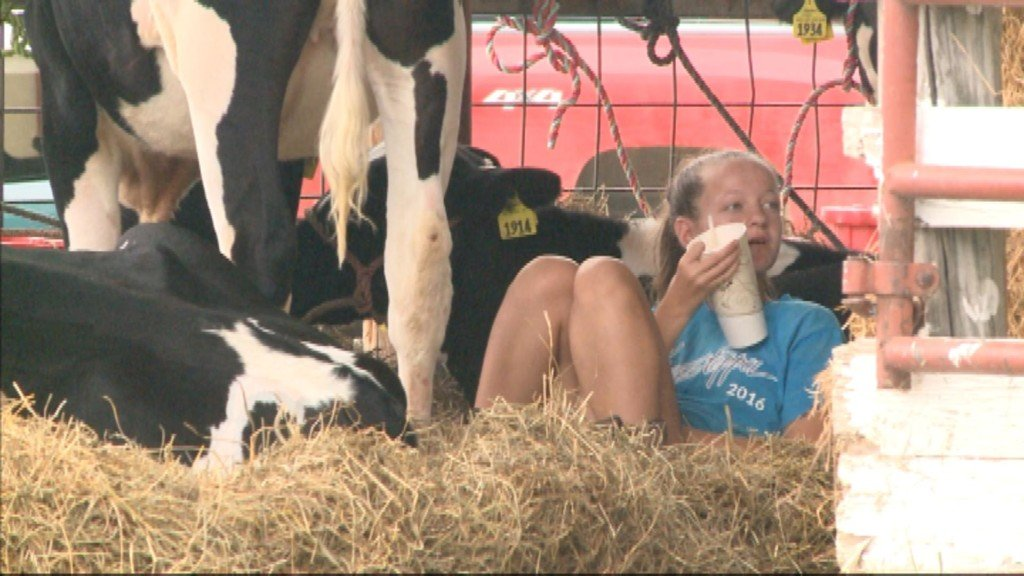 Trempealeau County Fair offers family fun for everyone