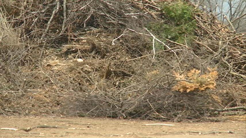 Brush collection coming next week in La Crosse