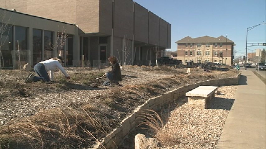 La Crosse 'Food Forest' prepares for second year