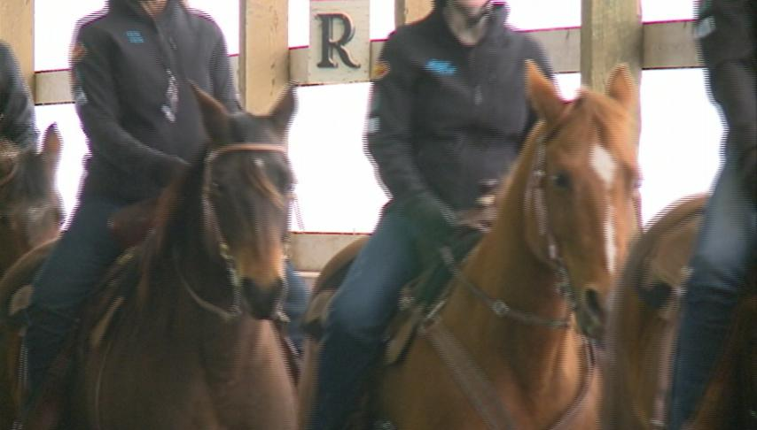 Cowgirl Up Drill Team will perform at Midwest Horse Fair