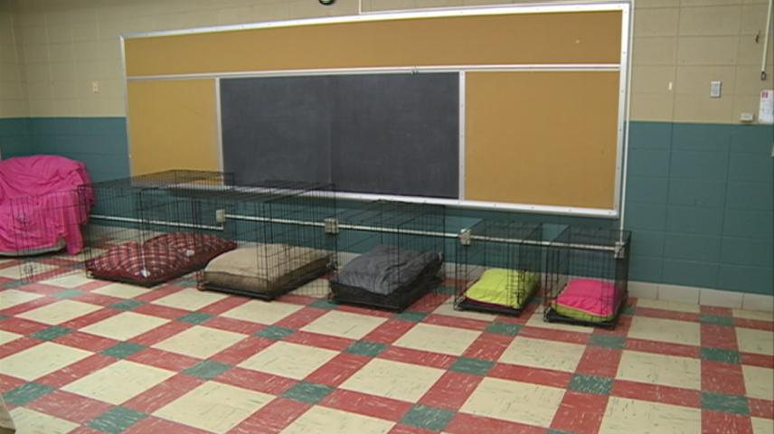 Former Dakota elementary building becomes dog day care