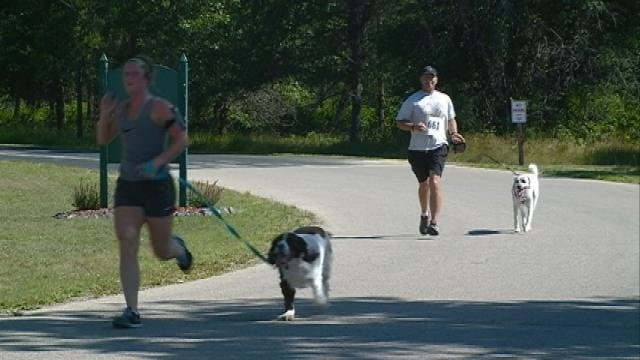 """Dog lovers attend 5k """"Paws for Pine View"""" Event Saturday"""