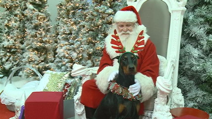 Santa takes pictures with pets in La Crosse
