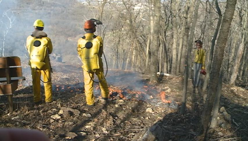 Prescribed burn marks Lower Hixon Forest opening
