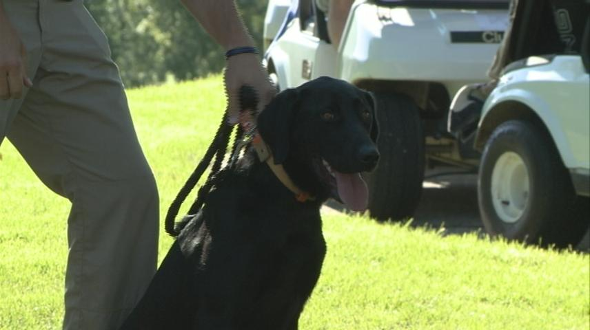 Putt'n for Pooches raises funds for La Crosse Police K-9