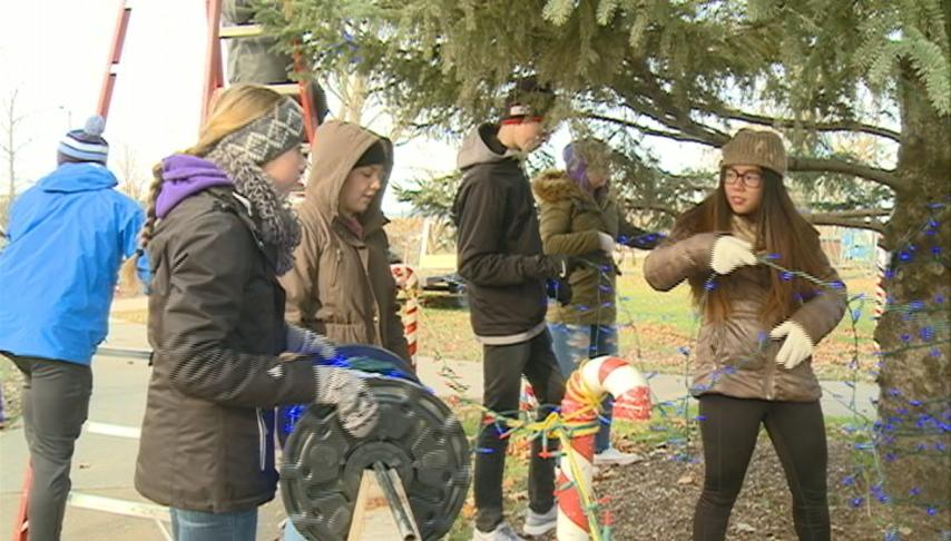 Rotary Lights to open later this week
