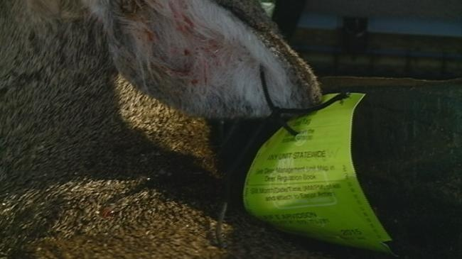Donate extra venison to 'Hunt for the Hungry,' food pantries