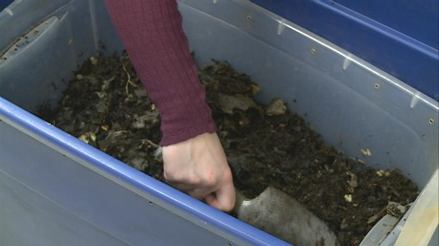 La Crosse elementary students learn about vermicomposting with worms and garbage