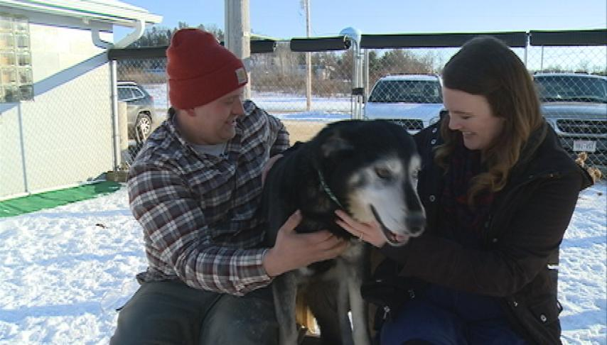 Sparta couple saves dog from icy water