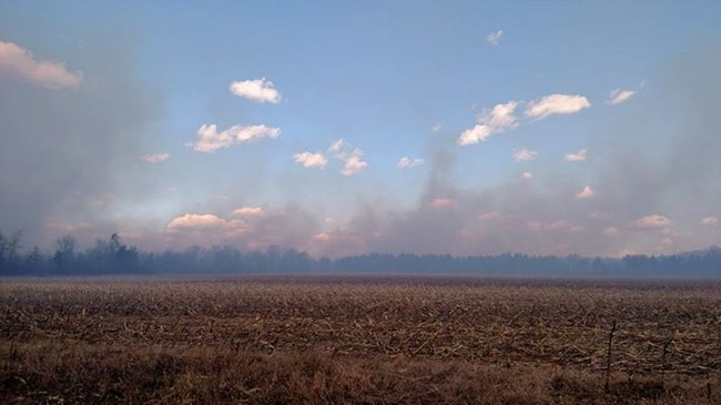 More than 40 homes evacuated due to wildland in Necedah