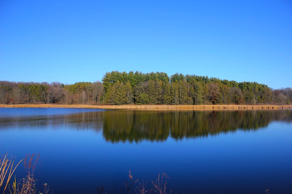 Nature Conservancy to work with Forest Service in Wisconsin
