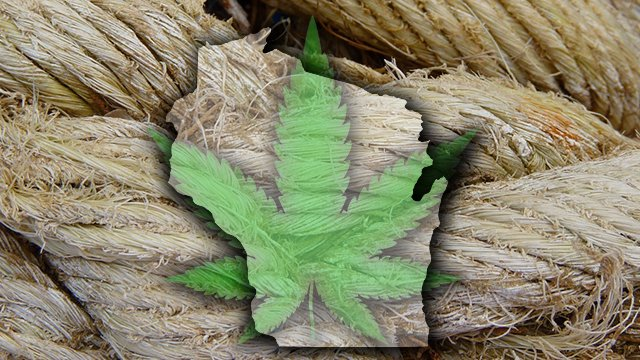 Wisconsin hemp bill changed to appease law enforcement