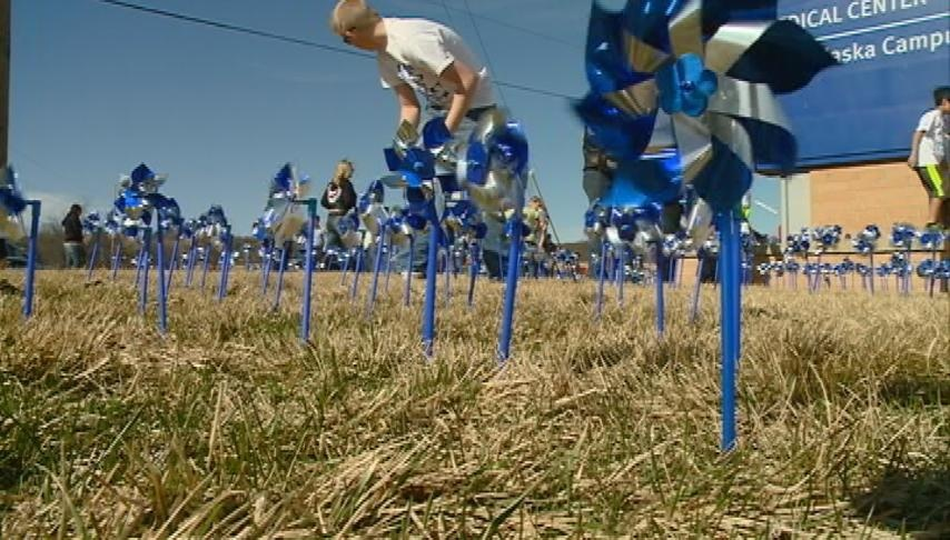 Pinwheels in La Crosse raise awareness of child abuse, neglect