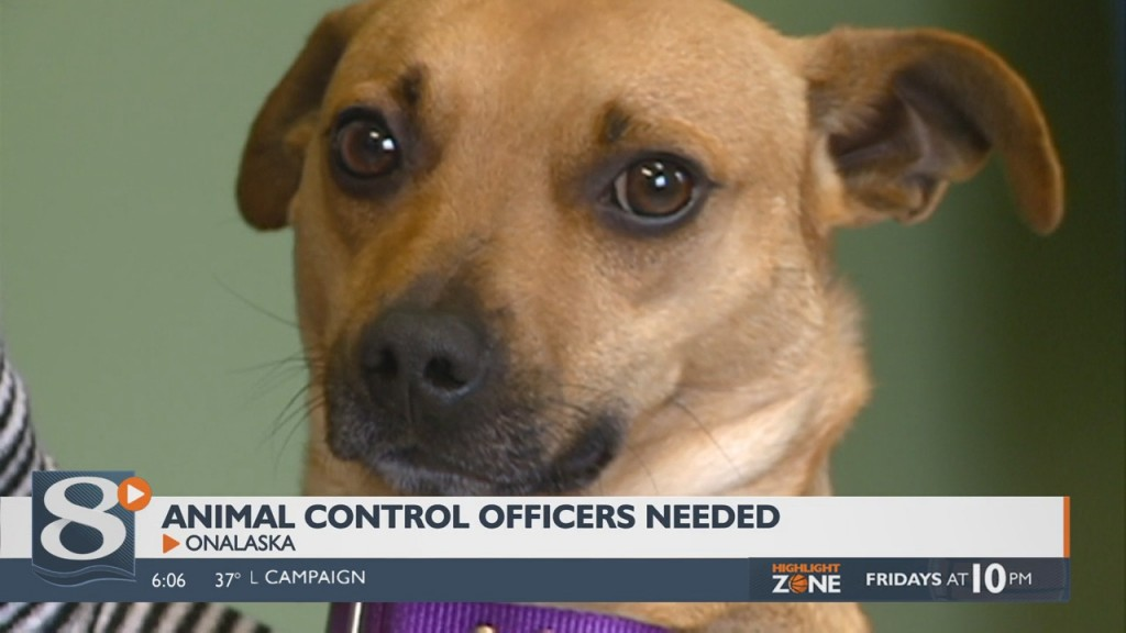 Local Humane Society In Need Of Animal Control Officers