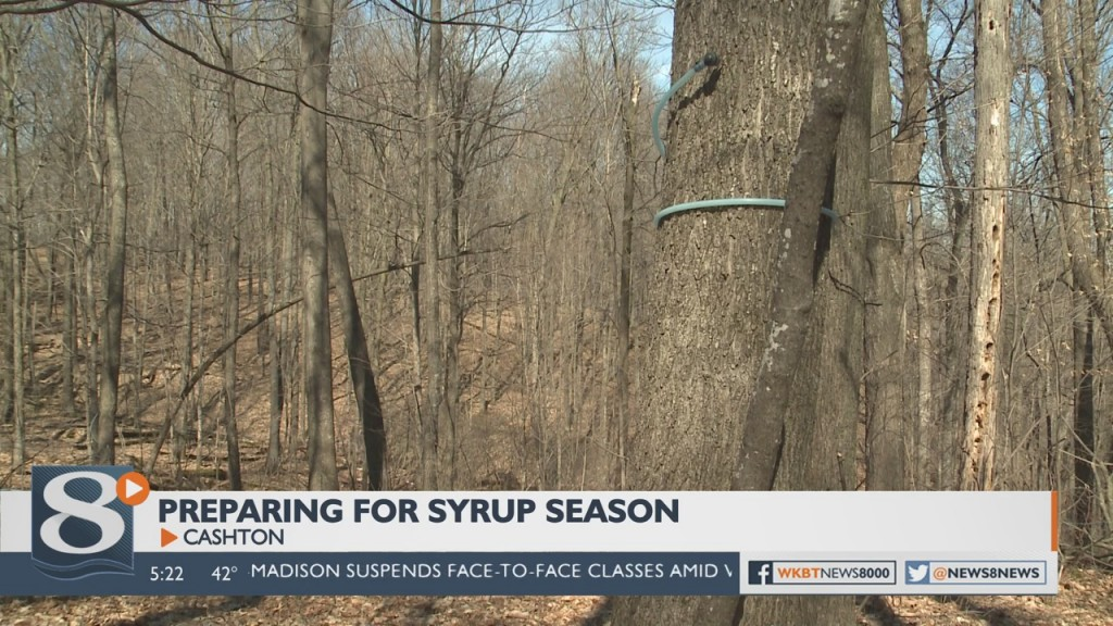 A Local Business Is Finding Themselves In A Sticky Situation Preparing For Syrup Season