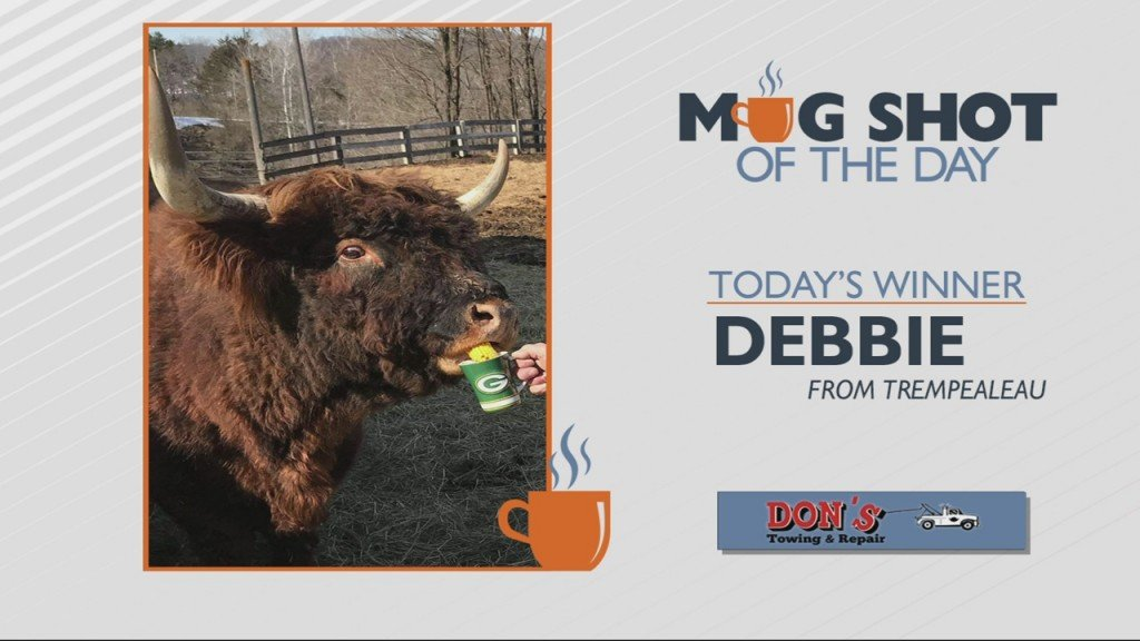 Mug Shot Of The Day Debbie From Trempealeau