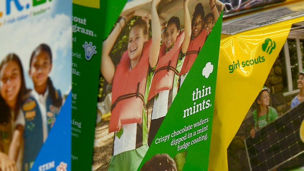 Girl Scouts Adjust