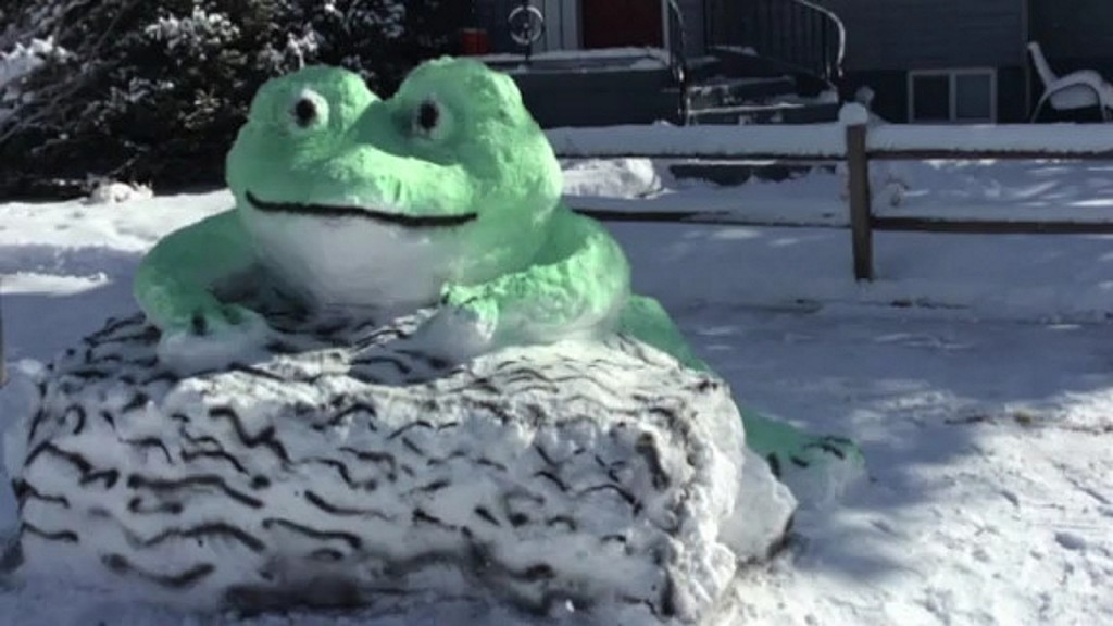 Man turns snow into neighborhood art