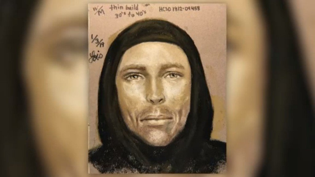 Sketch released in hunt for driver who gunned down 7-year-old girl
