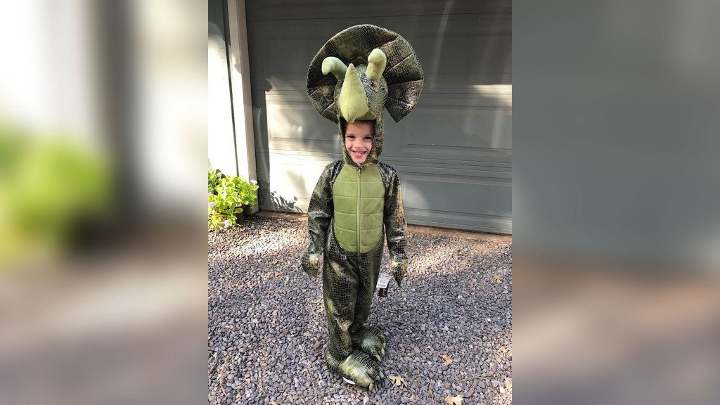 Strangers help boy replace dinosaur collection lost in Camp Fire